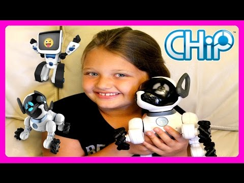 CHiP Dog & Coji Robot From WowWee Unboxing and Review