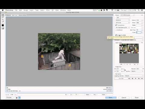 Saving an Animated GIF for the Web