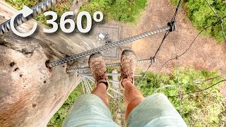 360º Climbing a 75 Meter Tree with No Rope - Pemberton - Australia 4K