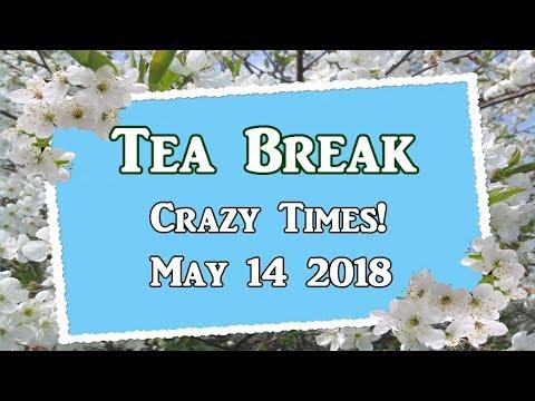 Crazy Times Tea Break