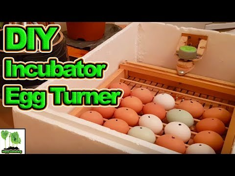 Home Made Poultry, Hen, Duck Incubator with Automatic Egg Turner