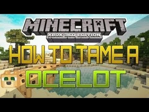 MinecraftXbox360 Edition: Tutorial | How To Tame A Ocelot & How to Make Baby Ocelots!