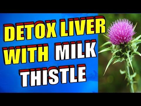 How To Detoxify Your Liver With Milk Thistle