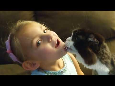 Crazy Cat Won't Stop Licking Me !! 😻🐈🤪