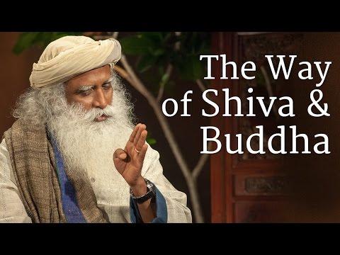 Xxx Mp4 The Way Of Shiva And Buddha Sadhguru 3gp Sex