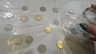 Collect the coins ⏳one minute fun game 😊