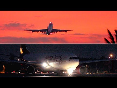 {TrueSound}™ Avianca Cargo A330 + Atlas Air 747 Freighter Morning Takeoff from Miami