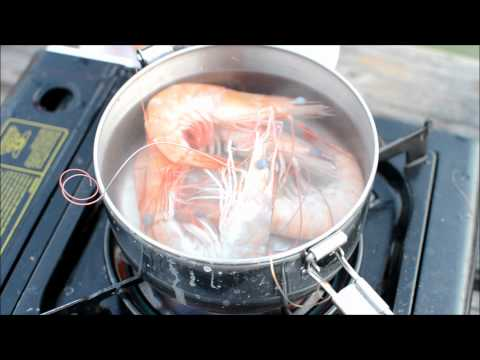 Cooking Live Shrimp