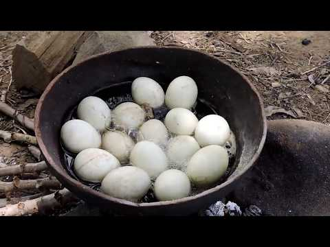 Primitive Technology - Boiled Baby egg ducks In the jar - Cooking Baby egg ducks eating delicious