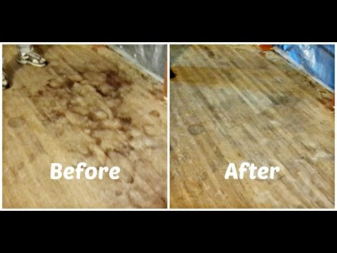 How to Remove Pet Urine Stains From Hardwood Floors