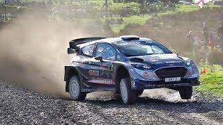 WRC Wales Rally GB 2017   Sweet Lamb