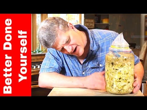 Naturally Fermented Sauerkraut ~ Complete Process with Results!