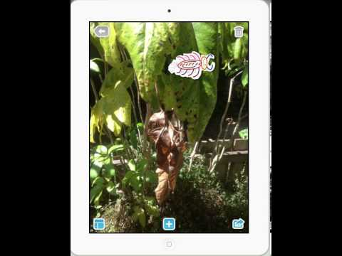 Pic Collage App Teacher Tutorial for iPad