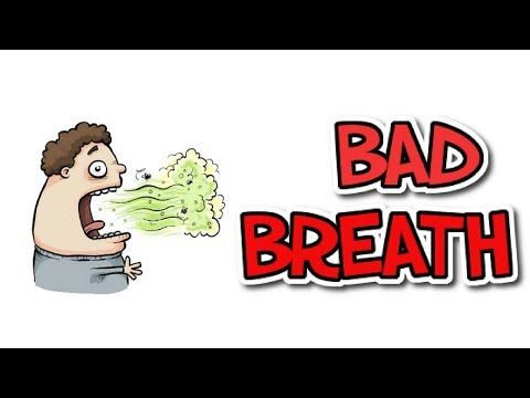 [Human Body 5] Make sure you know about BAD BREATH