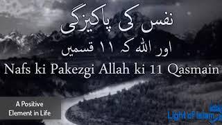 Nafs ki Pakeezgi aur Allah ki 11 Qasmain by Maulana Tariq Jameel