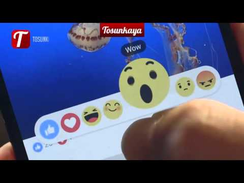 Facebook's New Reactions (New Like Button)