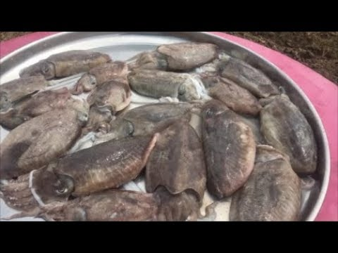 CuttleFish Puttu -  Easy and Tastiest way to cook Cuttlefish - Mouthwatering Cuttlefish Dish