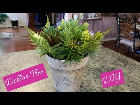 Dollar Tree Spring Succulents And Container DIY Easy