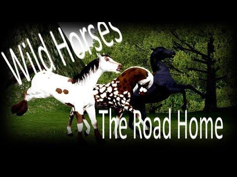 Wild Horses - Season 2 - Trailer + RELEASE DATE