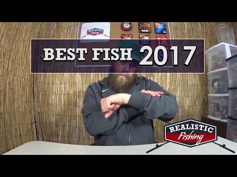 Realistic Fishing Best and Biggest Bass Catfish & Drum of 2017