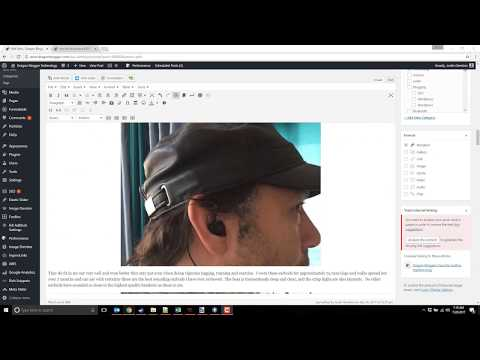 WP Rich Snippet Tutorial How To Do Review Posts in Wordpress