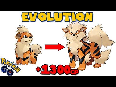 Evolving GROWLITHE to ARCANINE (POKEMON GO EVOLUTION)