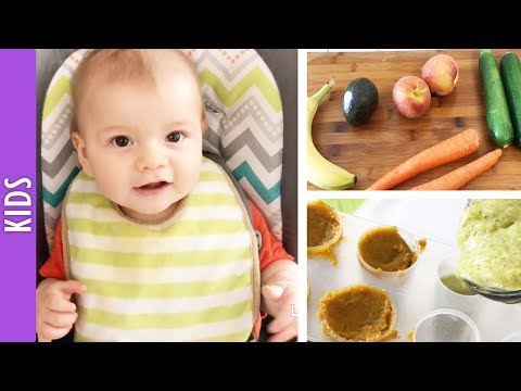Baby Food, Purees and Finger foods for my 7 Month Old - The290ss