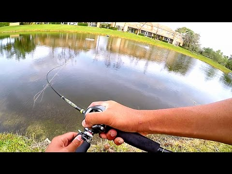 Fishing a New Pond I Found On Google Earth!!