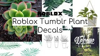 Tumblr Roblox Decal Picture 01 Roblox - Roblox Green Aesthetic Decal Id S