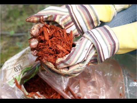 How to Make Mulch - Composting At Home DIY
