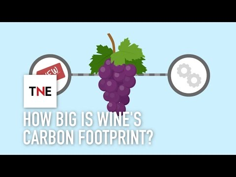 How big is wine's carbon footprint, and how can technology reduce it? | The New Economy