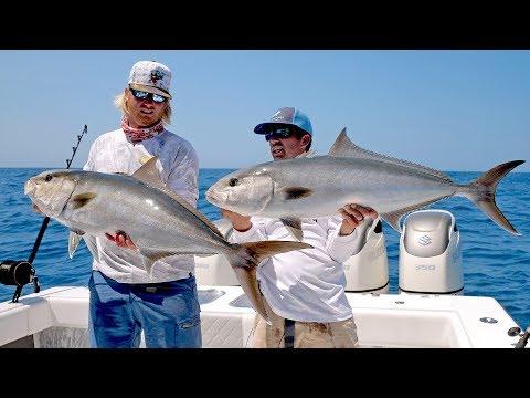 Absolutely INSANE Topwater Amberjack Fishing Action - 4K
