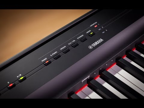 Xxx Mp4 Yamaha P 125 Digital Piano Full Demo With Gabriel Aldort 3gp Sex