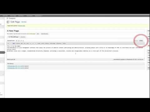 HTML View in the WordPress Editor