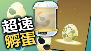 【Pokemon Go】流言實測 - 超速孵蛋法✦8分鐘一顆✦警察拜託不要開罰單