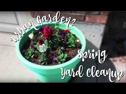 Backyard Tour & Cleaning up the yard | Urban Garden?