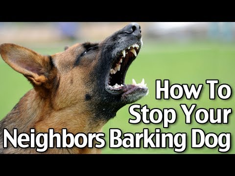How To Stop Your Neighbor's Dog From Barking - Short Version