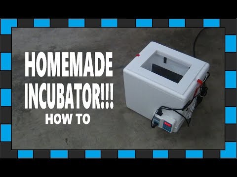 How To Make An Egg Incubator!!!