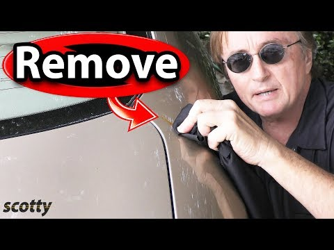 How to Remove Tree Sap and Bird Poop from Car Paint - The Right Way