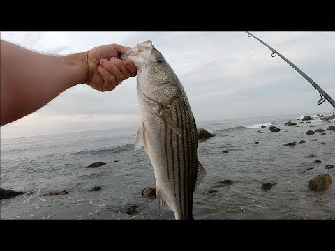 Montauk Summer 2018 - July Schoolies(Stripers) from the Surf