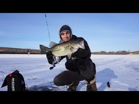 Chunky Largemouth Jigging Under the Ice