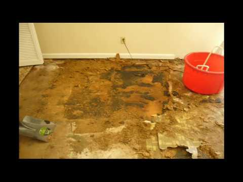 Replacing Water Damaged Particle Board Floors With Laminate Flooring