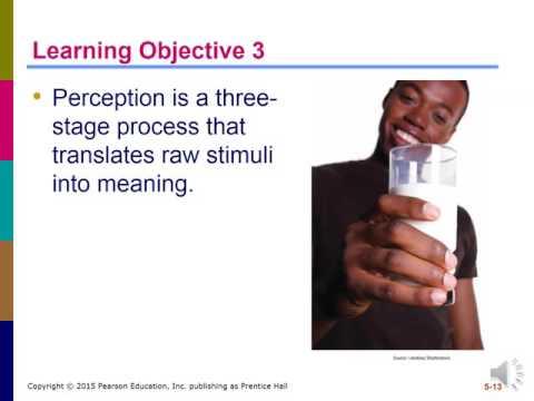 MKTG 3202 – Consumer Behavior: Perception (5)