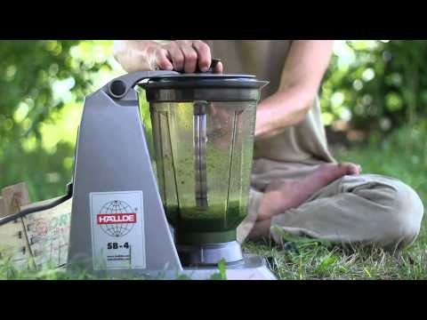 How to make a green smoothie with David - by Hanna Pauser Lindgren