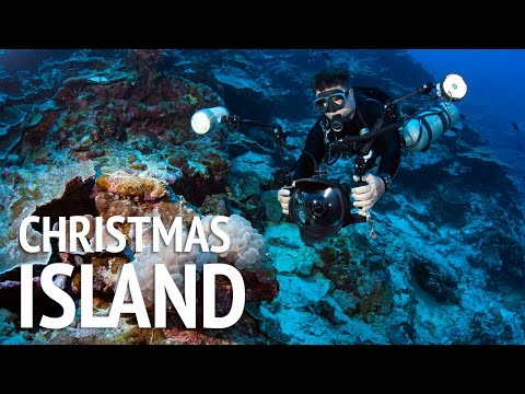 Christmas Island Diving Expedition
