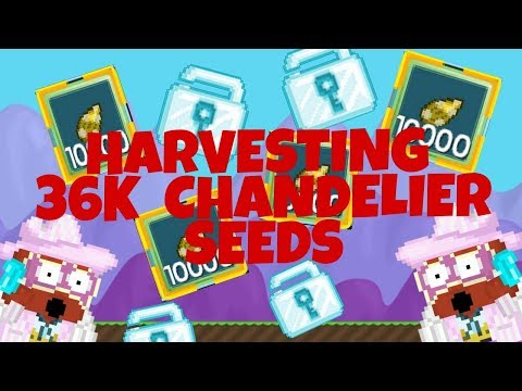 HARVESTING 36K CHANDELIER SEEDS!!! PROFIT?!?!   Growtopia
