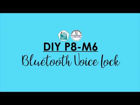 DIY P8 - M6 - Bluetooth Voice Lock