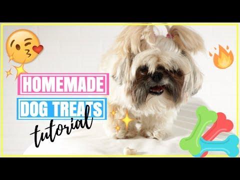 How To Make Tasty Homemade Dog Treats | Yogurt Peanut Butter Banana Honey Dog Treats