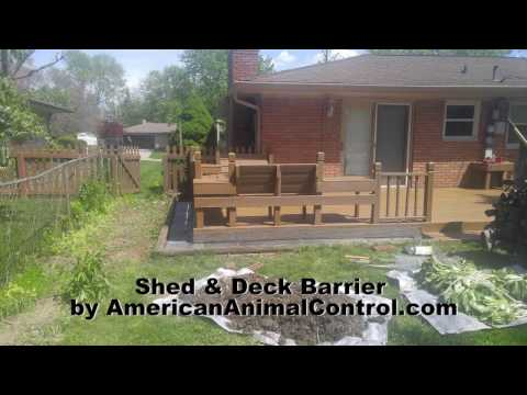 How do I Keep Animals from Going Under my Shed and Deck?
