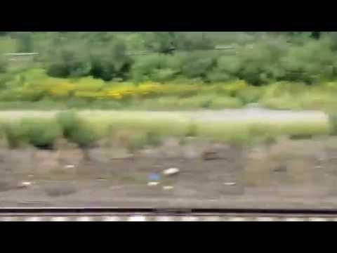 NJ TRANSIT From Princeton Junction To Newark Liberty International Airport Station